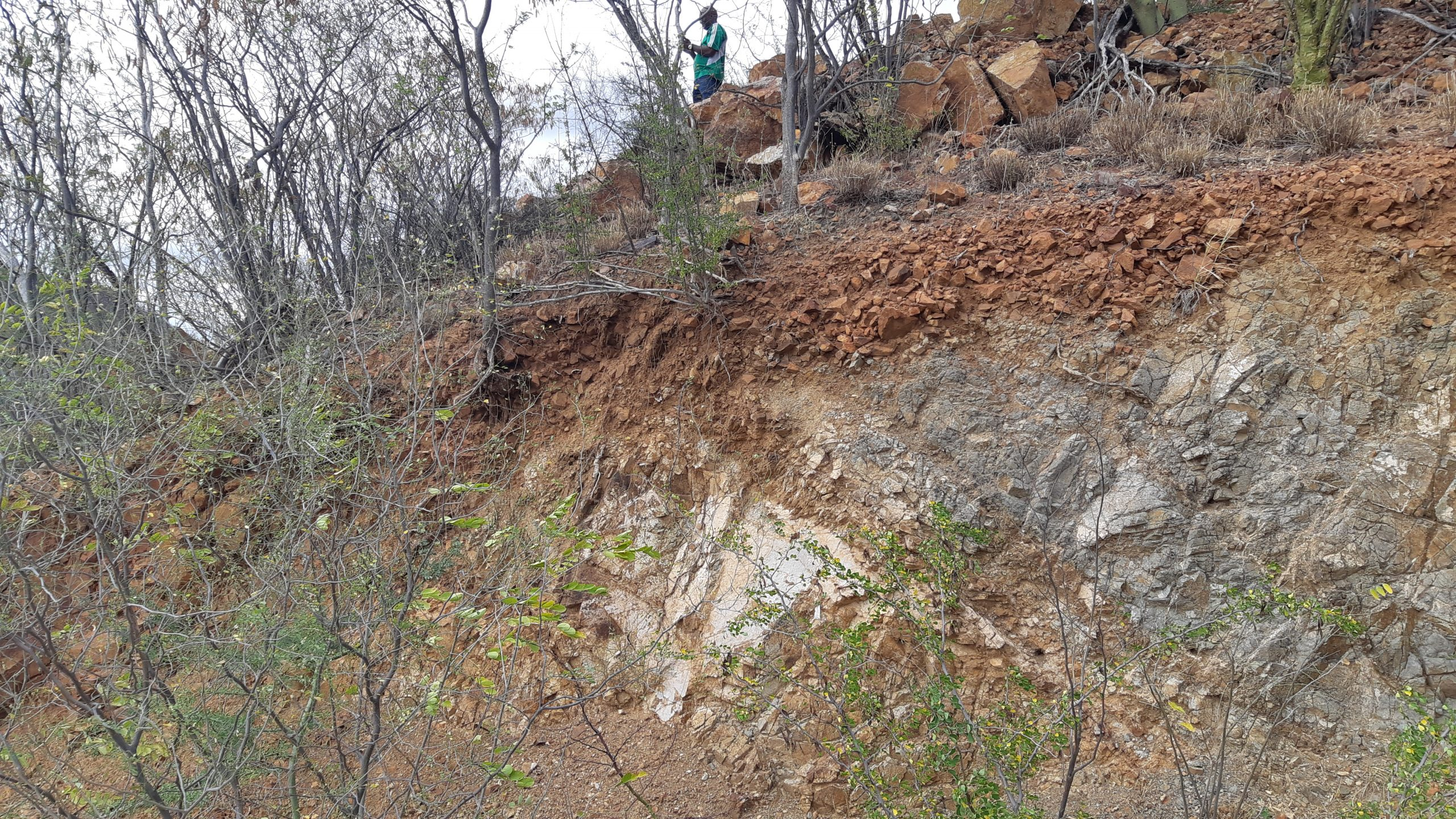 Trench from North Hill Zone at Pilar